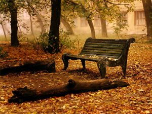 panchina-autunno